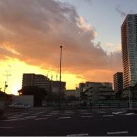 冷や汗後の夕日 ( ´∀`)