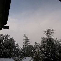 太陽も出て雪も降る空、1月23日の午後の空の明るさ。