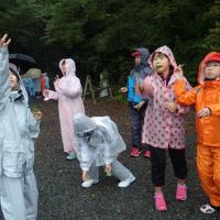 今日の午後は、雨の中を5年生と自然観察自然遊びをしました。ケヤキの葉実を飛ばしているところです。