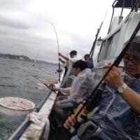 今年もまた、海釣り大会やります!