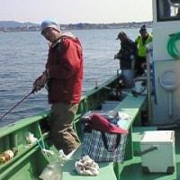 長井沖のカワハギ釣り