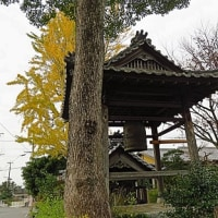 日本人男性の健康寿命は 71.1才