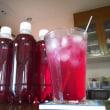 意外と簡単にできる 赤シソジュース