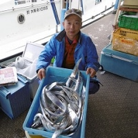 1月3日タチウオ新年初釣り釣果