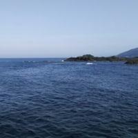 5月22日  加茂沖磯:ひろなか島~オオワンの地磯