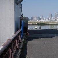 綾瀬川で荒川までサイクリング。