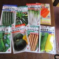 春まき野菜の種が通販で来た