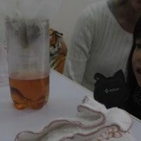 年少さんと理科実験遊び