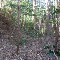 土塁の構成に飯田城史を思い