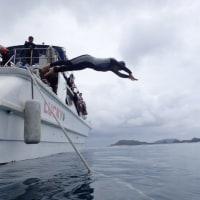 ケラマで体験ダイビング~!!