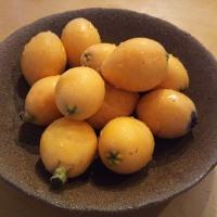 初夏の旬もの枇杷(ビワ)