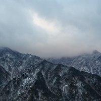 冬の別子ライン 2月12日撮影
