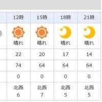 明日の天気は・・・・