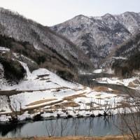 遅春 (湯西川)