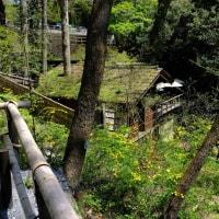 秋川渓谷へ