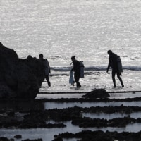 2016  沖縄探訪記 ダイバー