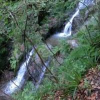 棒ノ折山へハイキング その3 Hiking to Bo-no-Oreyama No.3