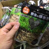 未使用 フジコン 鈴虫の保水苔