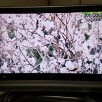 生駒の聖天さんで有名なお寺は?・・(^◇^)