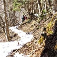 樹氷の稲村ヶ岳と大日岳を歩く 2017年1月6日 その4