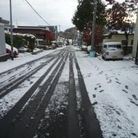 初雪が積もった・・!!