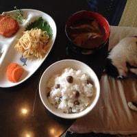 むかごご飯とモヤシナムル