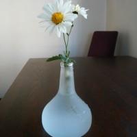 1ヶ月前の花
