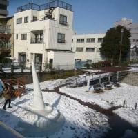 成人の日の雪にビックリ!東京スカイツリー