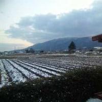 楽しい雪の日でした