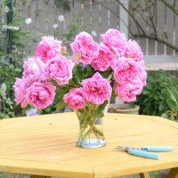 至福の花束