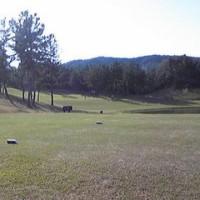 ゴルフをね、始めたんです(^O^)