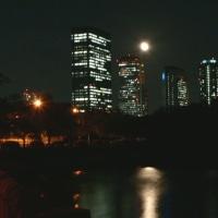 月光欲をしつつヨガをする、ロハスな秋の夜