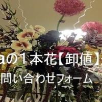 「喜寿」の御祝