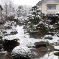 国道413号雪情報~津久井青野原