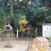 不二心流 中村一心斎先生のお墓参りをしてきました。