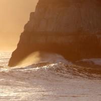 1月22日  黄金色の浜