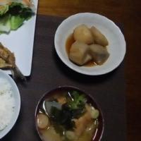 イワシのカレー味の天ぷら、フライ、サトイモの煮物、娘親子帰って行きました