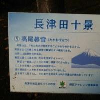 君は高尾山を知っているか!? ・・・ただし、○○の!