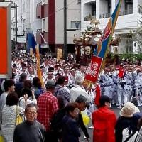 ゴールデンウイークのHOT会&小田原北條五代祭り