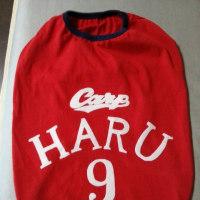 HARU…背番号9! \(^o^)/できまつたー♪