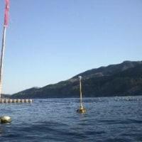 今シーズン初釣行は独航船・ナメタよりギンポ (^o^)