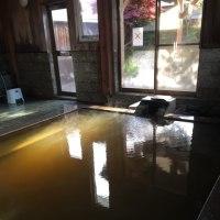 川渡温泉 こはく湯の宿 中鉢 NO448