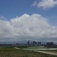 第1529号 晴れ晴れと、梅雨の晴れ間の金沢を歩く