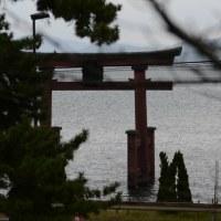 マキノビックランド(滋賀県高島市)・・・「メタセコイア並木」2.4Km