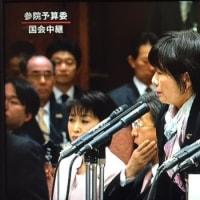 平野貞夫さん / 「安倍首相の得意技は、国会議員の審議発言権の妨害だ」