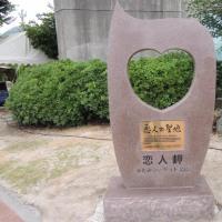 大州おおず→佐田岬半島→三崎(えびす屋)→ふたみシーサイド公園  2014.08.02 「172」