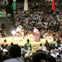 大相撲5月場所を観戦~②