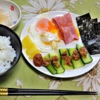 今日は和朝食だ! 朝採りキューリと金山寺味噌が1年ぶりにデートした
