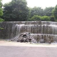 新宿滝巡り再び