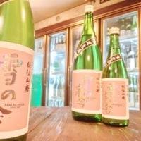 『28BY 雪の茅舎 秘伝山廃 限定生酒(夏酒)』